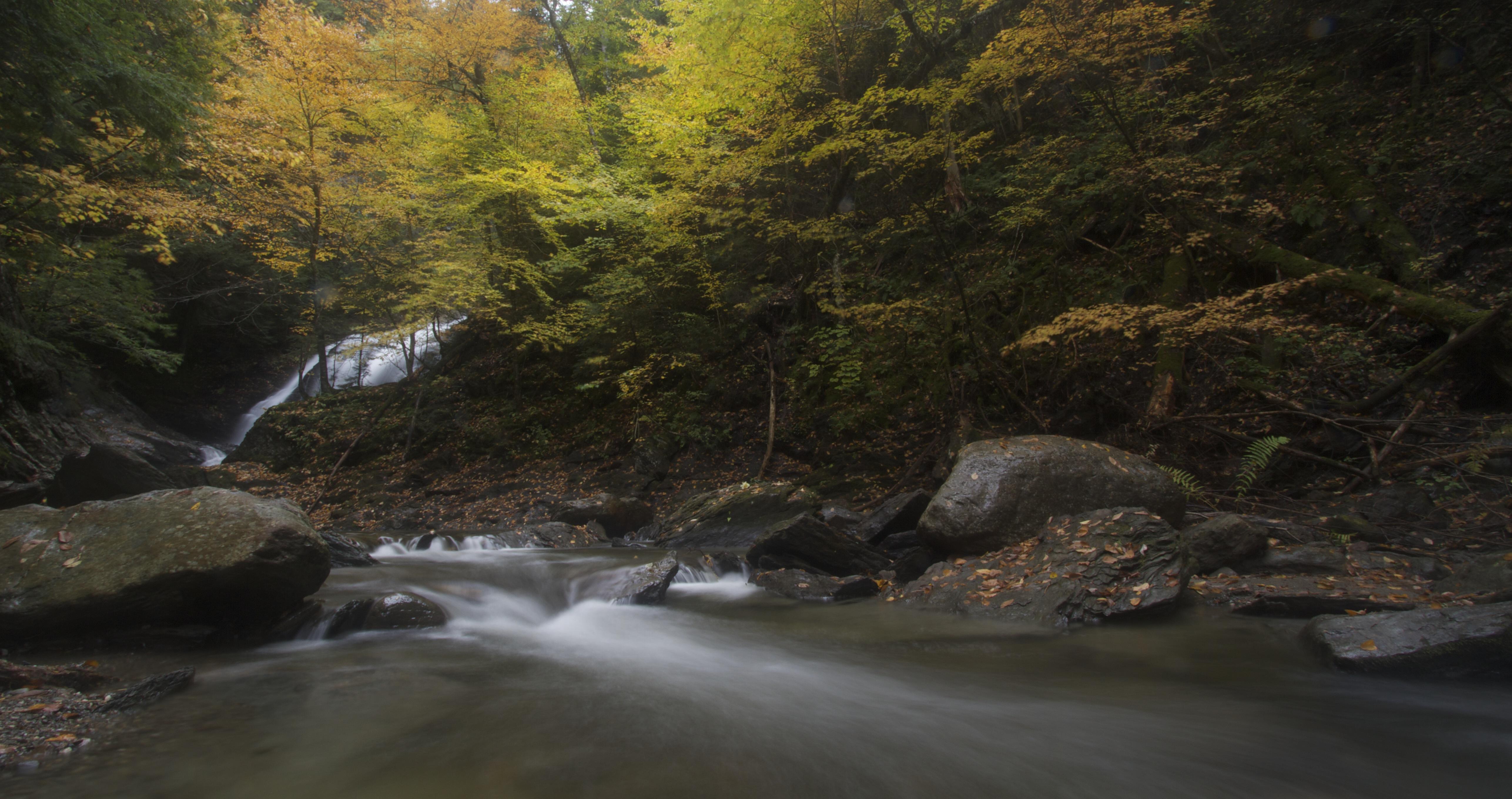 Glenn Moss Creek, Vermont