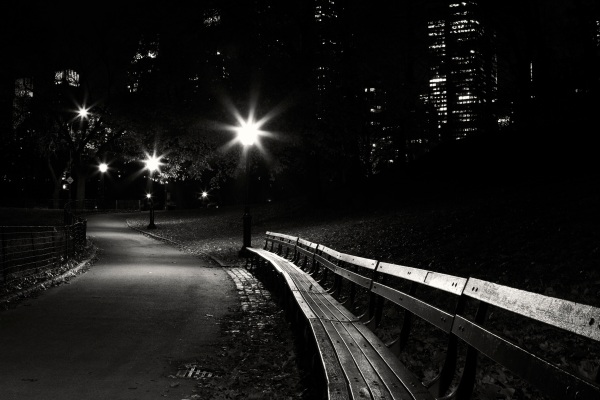 Park bench in Central Park