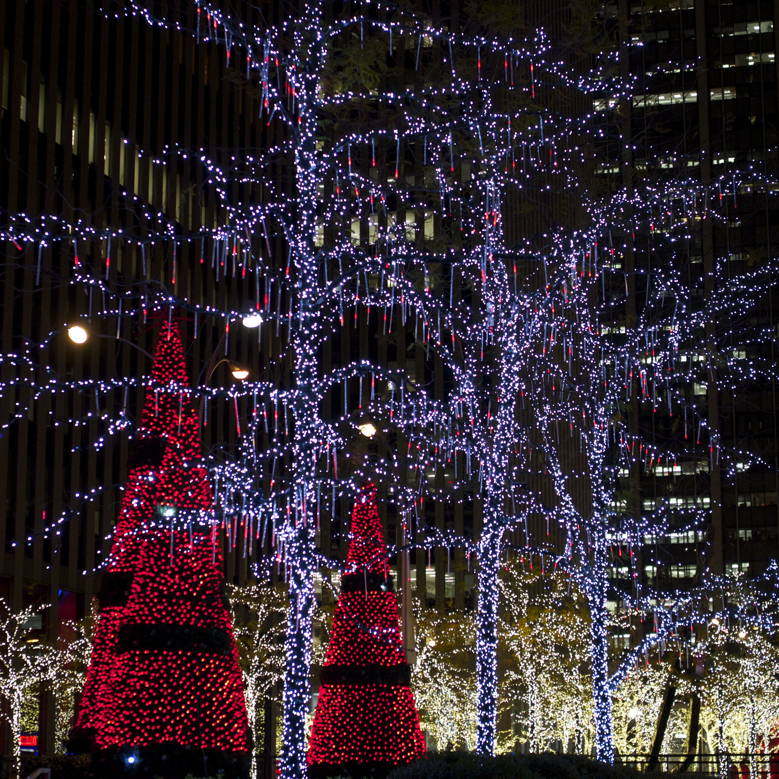 Holiday Decorations in New York