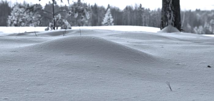 Snow close-up