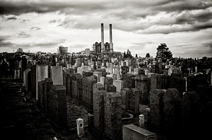 New York Cemetery