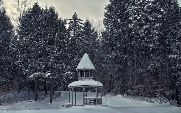 Snow covered Gazebo in Vermont Forest