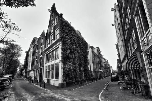Street corner in Amsterdam
