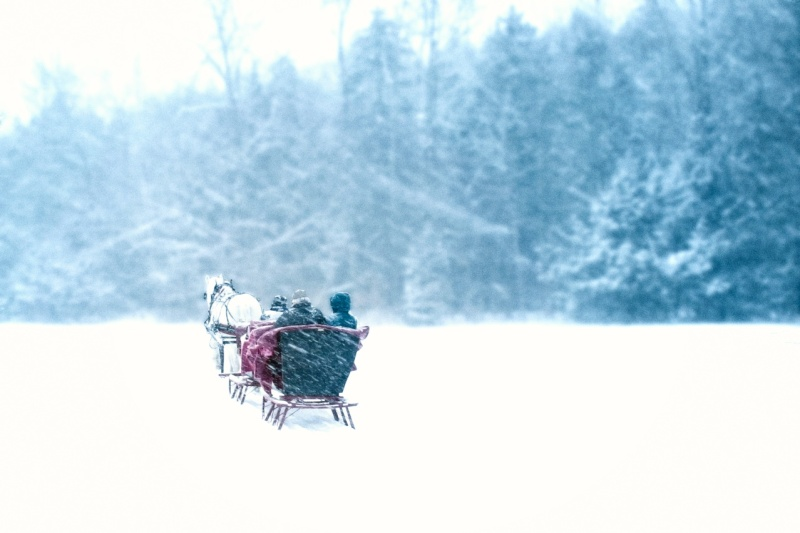 Sleigh ride through heavy snow in Vermont
