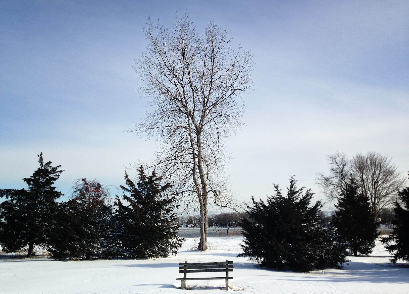 Clinton Beach bench in winter.