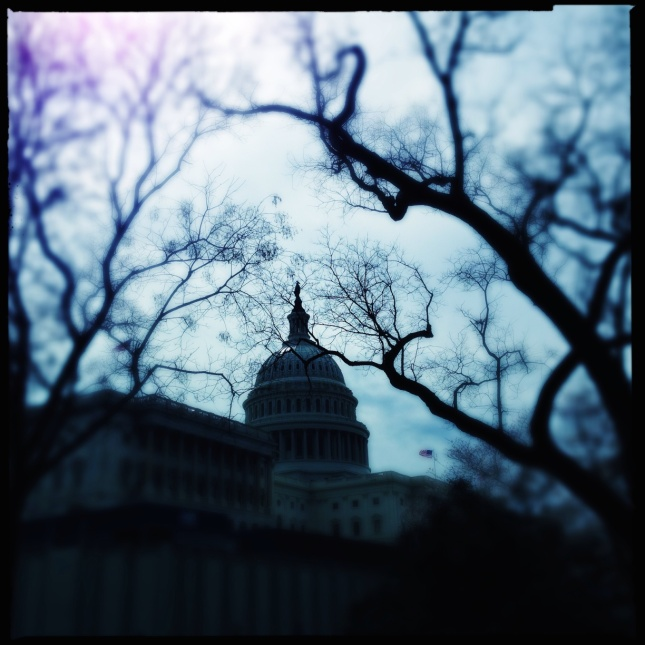 Capitol Blurred