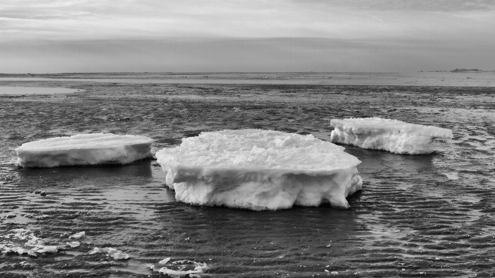 ice floes 1