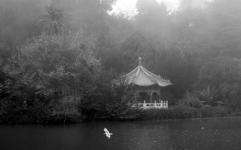 Pagoda in Golden Gate Park