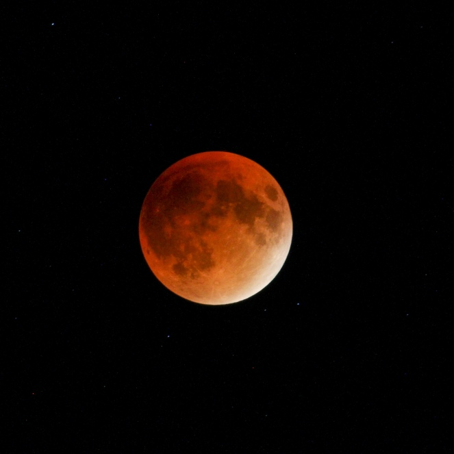 Lunar Eclipse-61