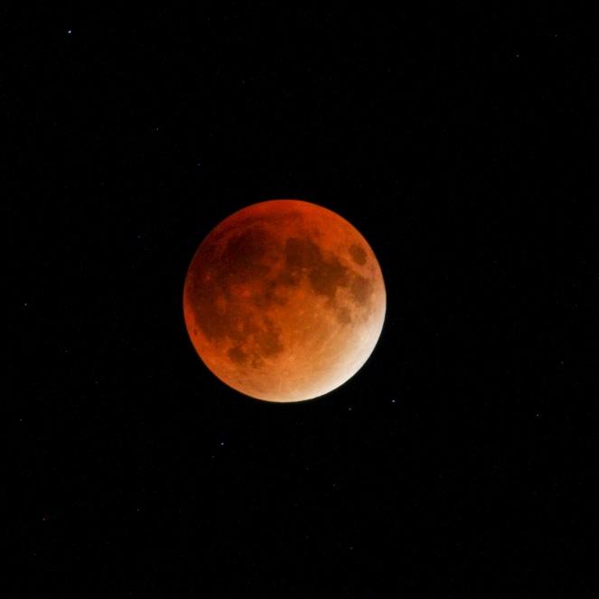 Lunar Eclipse-61