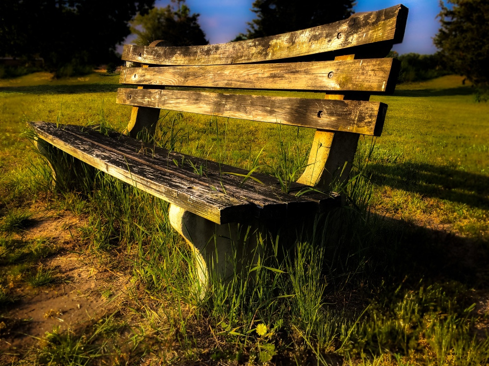 bench in sunset light